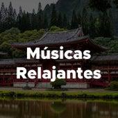 Musicas Relajantes - Musica Reiki Para Dormir de Relajacion Del Mar