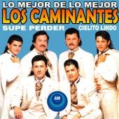 Lo Mejor de Lo Mejor by Los Caminantes