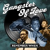 Gangster of Love (Remember When) von Various Artists