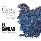 El Gavilán by Sofia Rei