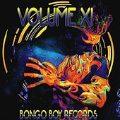 Bongo Boy Records, Vol. XI by Various Artists