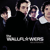 Play & Download Red Letter Days by The Wallflowers | Napster