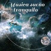 Música sueño tranquilo - Sonidos de la naturaleza, calmar los nervios y ayuda a conciliar el sueño rápidamente, música de relajación by Musica Para Dormir Profundamente