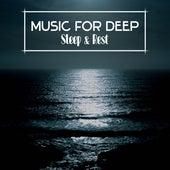 Music for Deep Sleep & Rest – Calming Sounds, Relaxing Music, Healing Waves, Nature Vibes by Calm Ocean Sounds