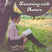 Learning with Nature – New Age Music for Study, Better Concentration, Stress Free, Focus, Good Memory by New Age