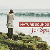 Nature Sounds for Spa – Relaxation Wellness, Music for Massage, Spa, Peaceful Mind, Soft Sounds to Rest, Zen, Soothing Piano, Relaxing Waves by Nature Sounds Relaxation: Music for Sleep, Meditation, Massage Therapy, Spa