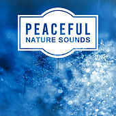 Peaceful Nature Sounds – New Age Music for Relaxation, Pure Waves, Healing Water, Sounds of Sea, Soft Music to Rest, Calm Down by Deep Sleep Relaxation