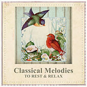 Classical Melodies to Rest & Relax – Soft Piano Music, Rest All Day, Soothing Relaxation, Music to Calm Down by Classical Chill Out