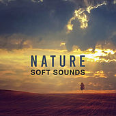 Nature Soft Sounds – Calm Down with Nature Music, New Age Relaxation, Chill Yourself, Inner Balance by Nature Sound Series