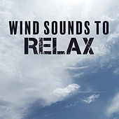 Wind Sounds to Relax – Rest with Nature Sounds, Soothing & Calming New Age, Music to Rest & Relax by Nature Sound Series