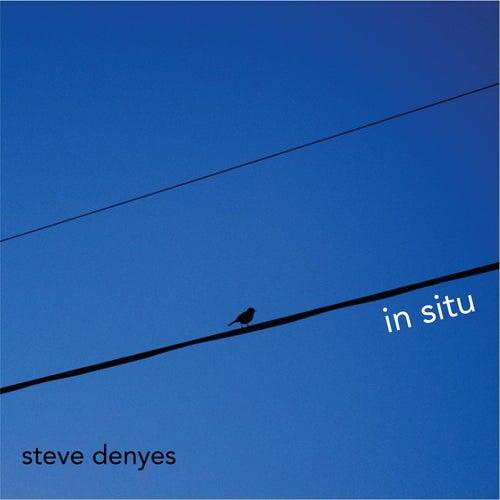 In Situ by Steve Denyes