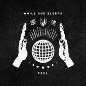 Feel van While She Sleeps