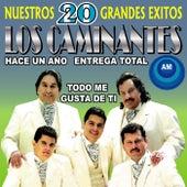 Nuestros 20 Grandes Éxitos by Los Caminantes