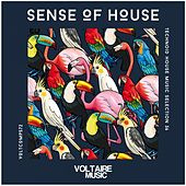 Sense Of House, Vol. 36 by Various Artists