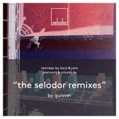 The Selador Remixes by Quivver