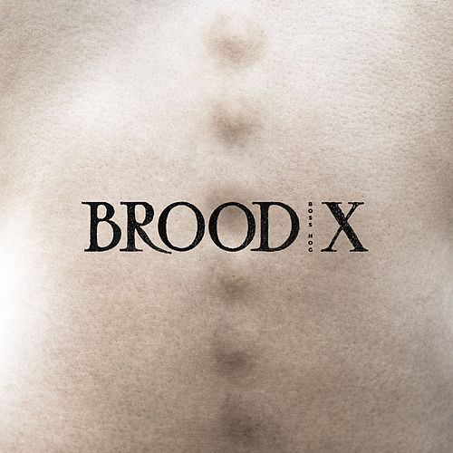 Play & Download Brood X by Boss Hog | Napster