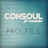 Pro_File (Remixes) by Various Artists