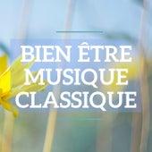 Bien être musique classique by Various Artists