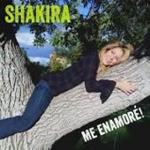 Me Enamoré by Shakira