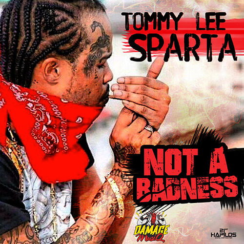 Not a Badness by Tommy Lee sparta