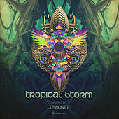 Tropical Storm by Various Artists