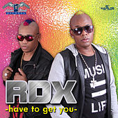 Have to Get You by RDX