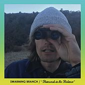 Diamonds In the Distance by Swarming Branch