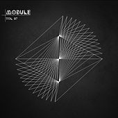 Module, Vol. 07 by Various Artists