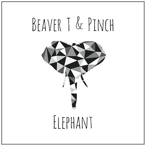 Elephant by Pinch