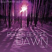 Beats Before Dawn, Vol. 5 by Various Artists