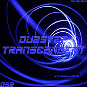 Dubstep Transcendent by Various Artists