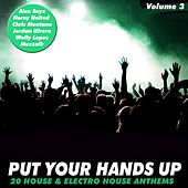 Put Your Hands Up, Vol. 3 by Various Artists