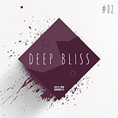 Deep Bliss, Vol. 2 by Various Artists