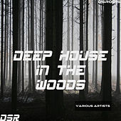 Deep House in the Woods by Various Artists
