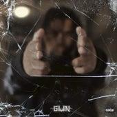 Gun by Gun