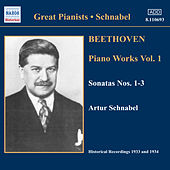 Play & Download Piano Works Vol. 1 by Ludwig van Beethoven | Napster