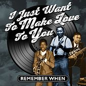 I Just Want to Make Love to You (Remember When) von Various Artists