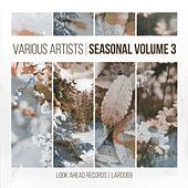 Seasonal, Vol. 3 by Various Artists