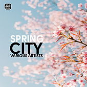 Play & Download Spring City by Various Artists | Napster