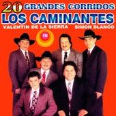 20 Grandes Corridos by Los Caminantes