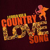 I Could Use a Country Love Song von Midday Sun