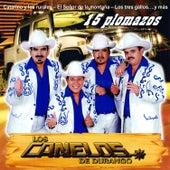 15 Palomazos by Los Canelos De Durango