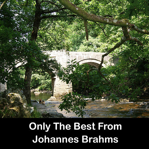 Only The Best From Johannes Brahms by Johannes Brahms