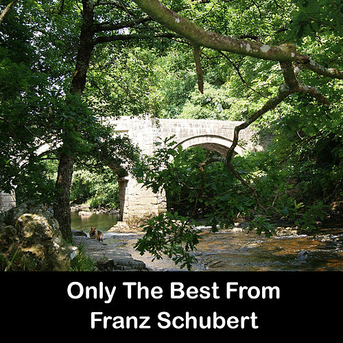 Only The Best From Franz Schubert by Franz Schubert