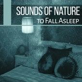 Sounds of Nature to Fall Asleep – Sleep Music, Lullabies for Deep Sleep, Easy Sleep, Relaxing Music, Pure New Age Relaxation by Sounds Of Nature