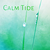Calm Tide – Relaxing Waves for Sleep, Soothing Water, Nature Sounds, Deep Rest, Ocean Dreams, Pure Mind by Sounds Of Nature