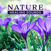 Nature Healing Sounds – Soft Sounds to Calm Down, Rest with New Age, Mind Relaxation, Harmony Soul, Time to Chill by Nature Sounds Relaxation: Music for Sleep, Meditation, Massage Therapy, Spa