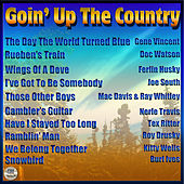 Goin' Up The Country von Various Artists