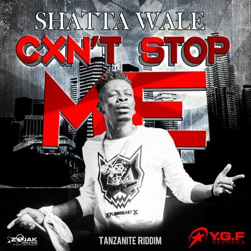 Caan Stop Me - Single de Shatta Wale
