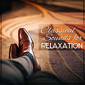 Classical Sounds for Relaxation – Pure Mind, Instrumental Music to Rest, Calmness & Harmony, Bach, Mozart, Beethoven by Classical Sleep Music